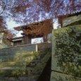 自作ピンホールカメラ(ブローニー)の写真_京都・曼殊院